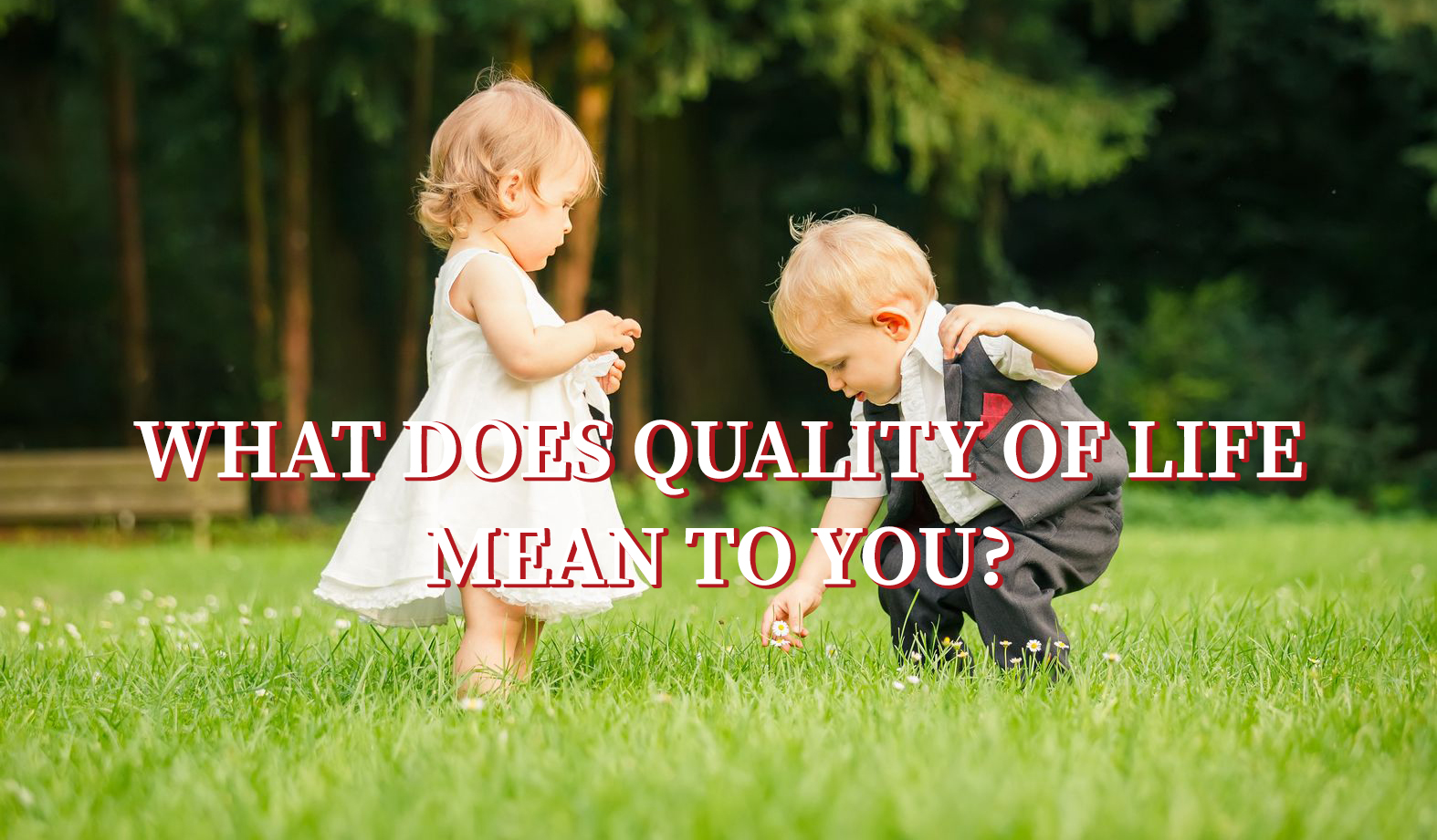 quality of life Looking for online definition of quality of life in the medical dictionary quality of  life explanation free what is quality of life meaning of quality of life medical.