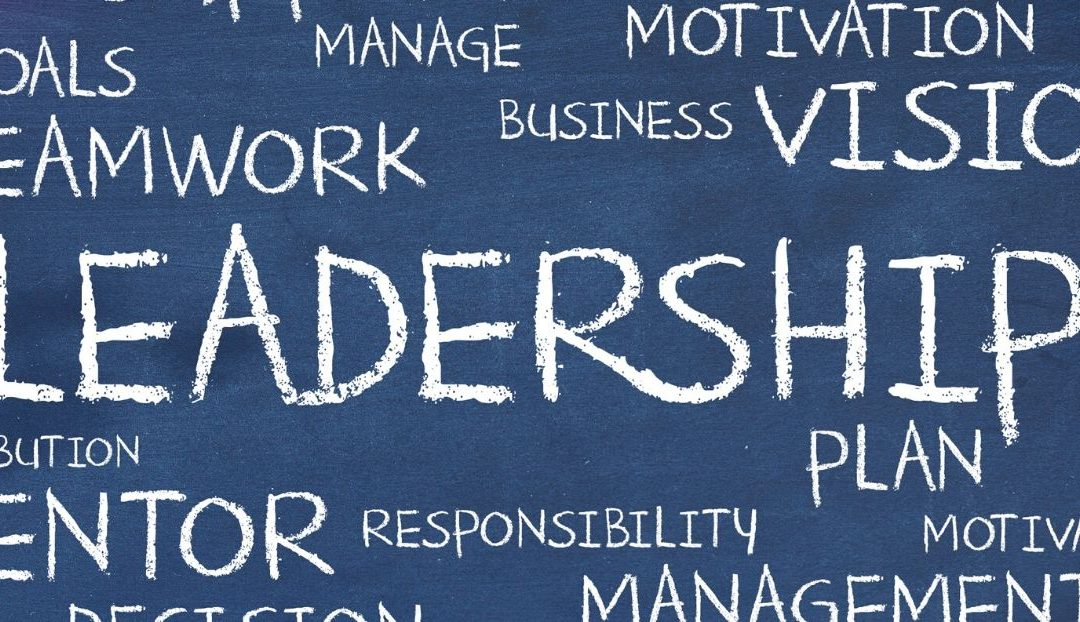 What Are Your Unique Leadership Capacities?